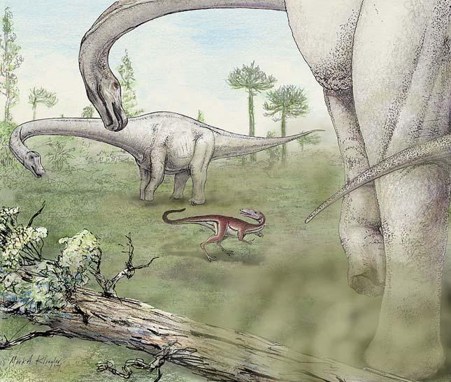 60 tonnás dinoszaurusz