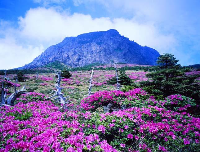 A világ 7 természeti csodája