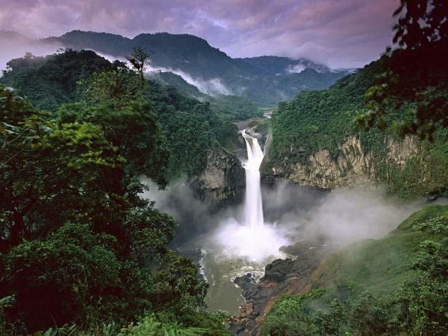 Amazonas esőerdő