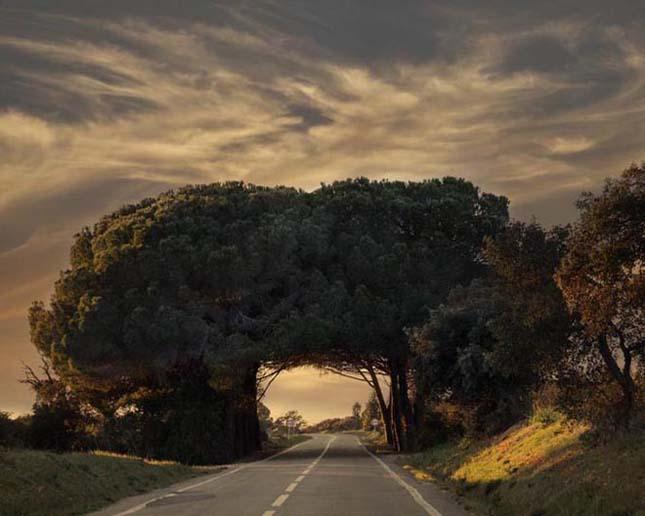 Alentejo, Portugália