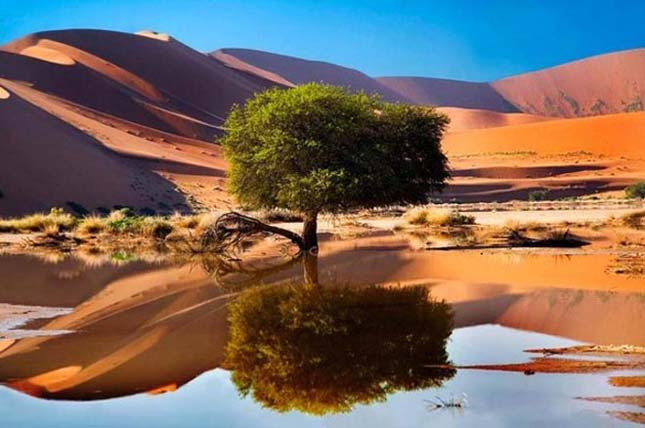 Sossusvlei, Namíb-sivatag, Namíbia
