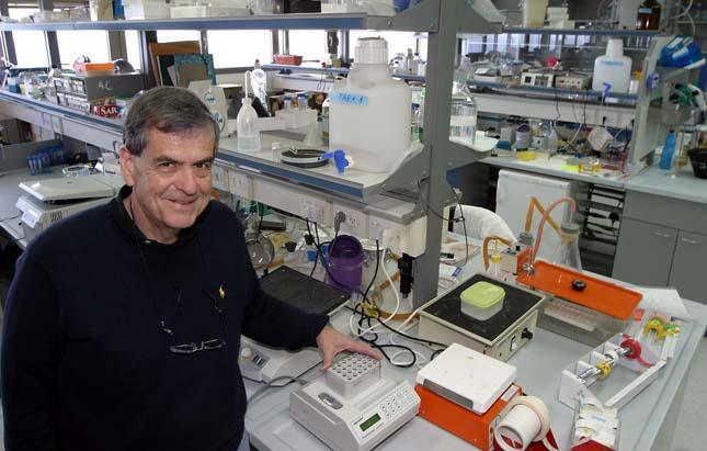 Rákos sejtekkel harcoló fehérje