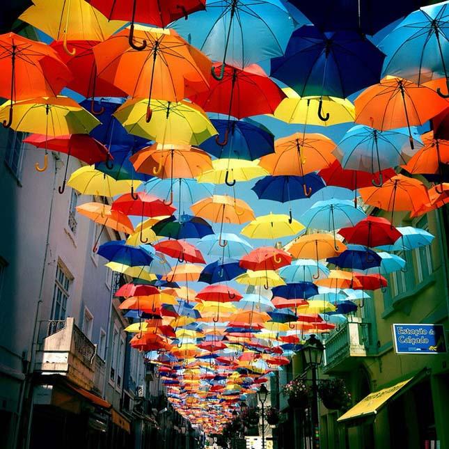 Agueda esernyői