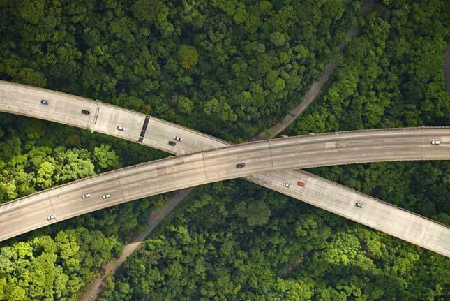 Autópálya a dzsungel felett