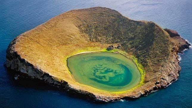 Bainbridge Rocks, Galápagos-szigetek