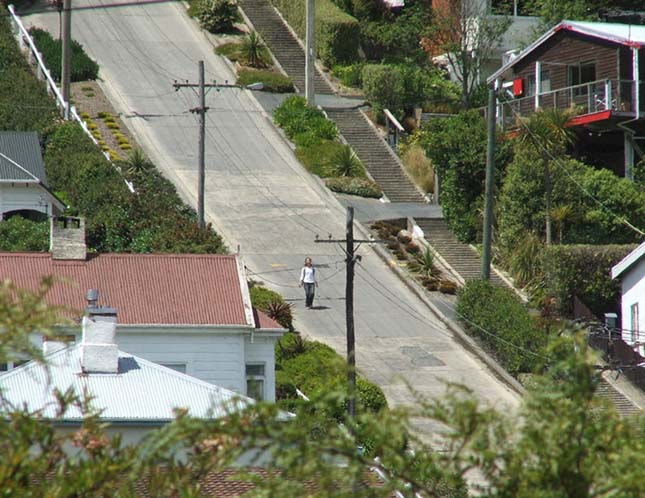Baldwin Street, a világ legmeredekebb utcája