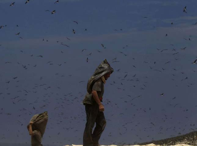 A guanóval borított Ballestas-szigetek