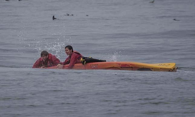 Kajakosokra ugrott a hatlmas púpos bálna