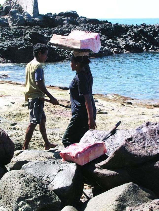 Bálnavadászat Indonéziában