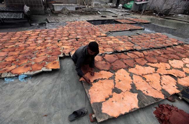Bangladesi bőrgyár