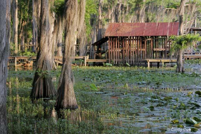 Caddo-tó