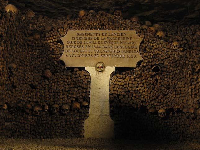 Európai csontházak