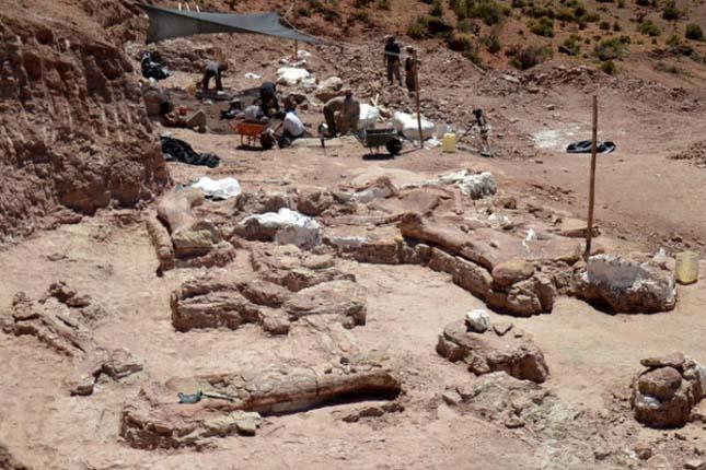 Dinoszaurusz csontok