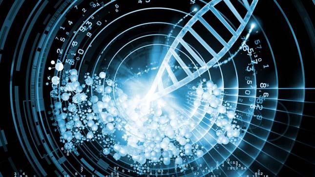 DNS információ tárolás