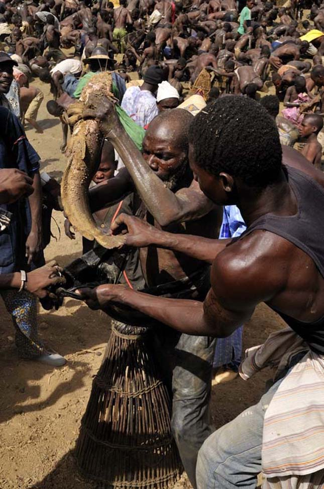 A dogon törzs rituális halászata