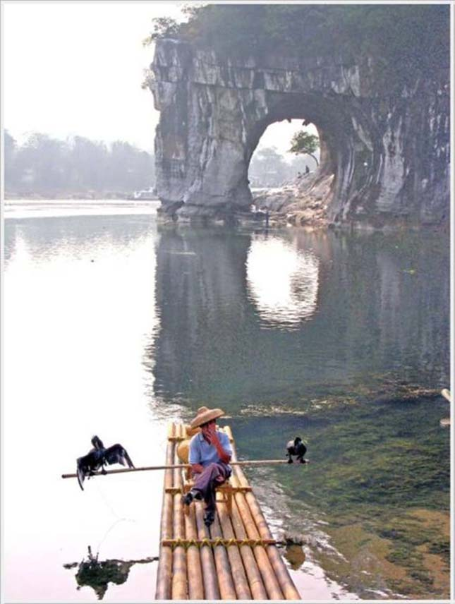 Elefánt szikla