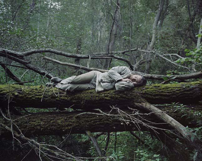 Élet a vadonban
