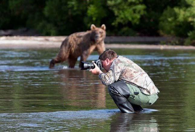Fotósok, akik bármit megtesznek a tökéletes képért