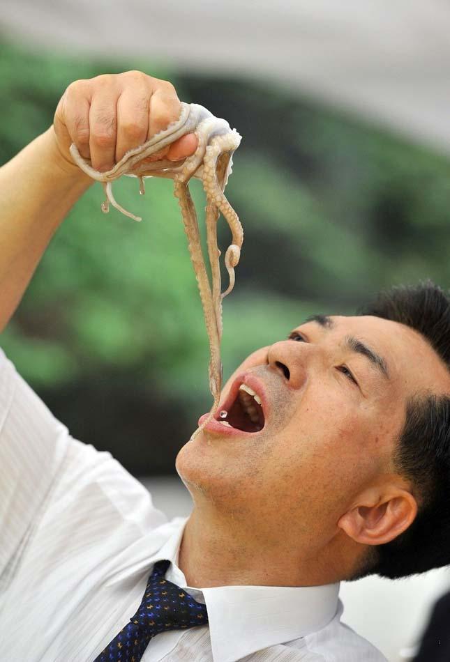 Élő polip evés