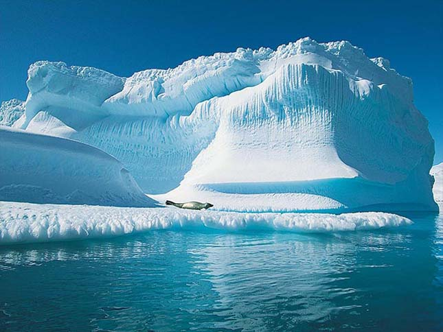 Gyorsabban olvad a jég az Északi-sarkon