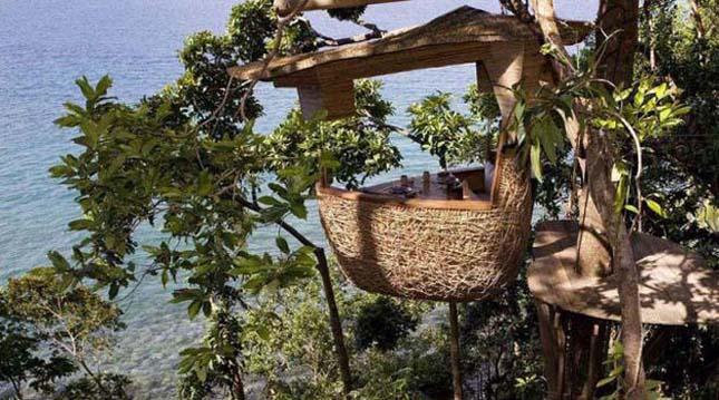 Étterem a fa tetején, Thaiföld