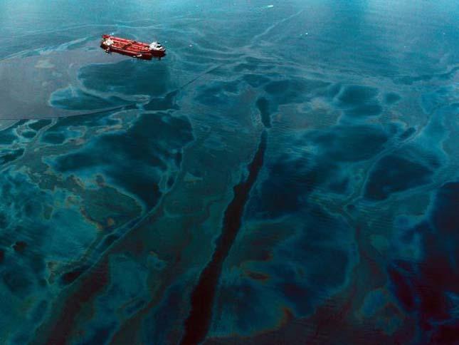 Exxon Valdes