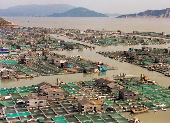 Úszó falu Kínában