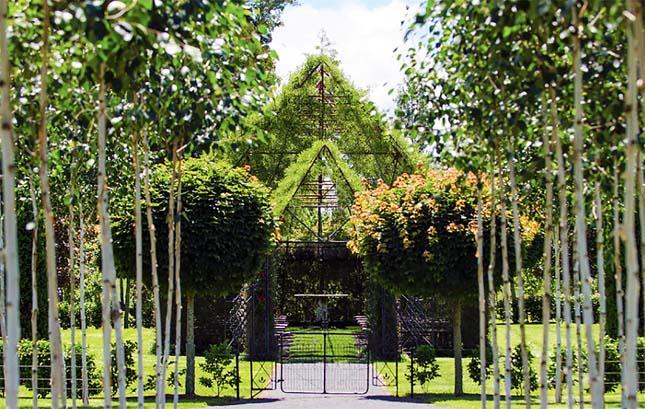 Fákből nőtt templom