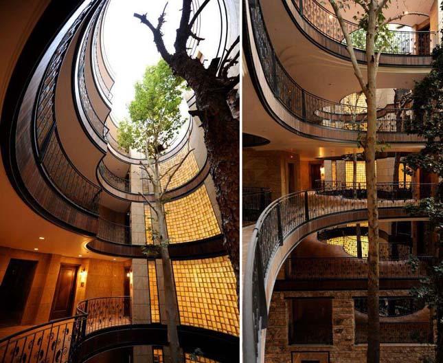 Amikor a fák az épületek részévé válnak