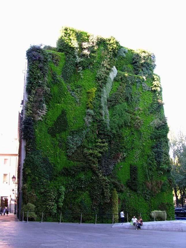 Függőleges kertek