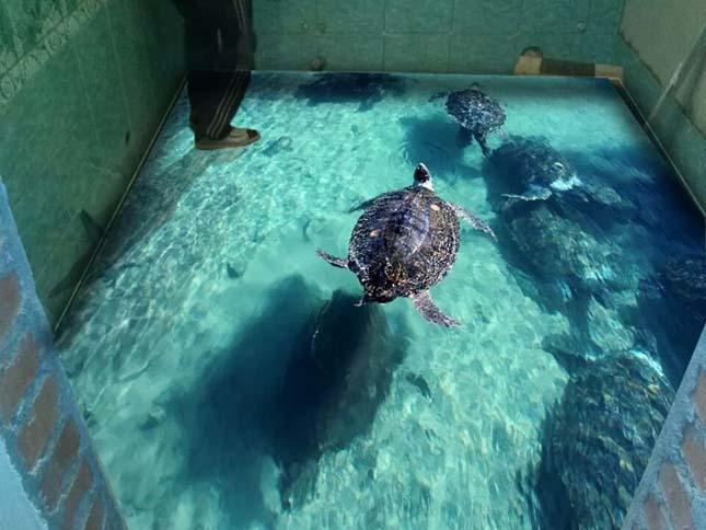 Óceán a talpunk alatt – kreatív fürdőszoba padlók  Érdekes Világ