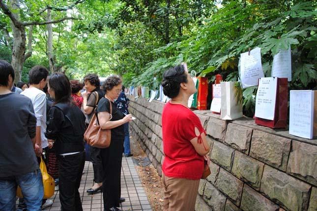 Házasság piac, Sanghaj
