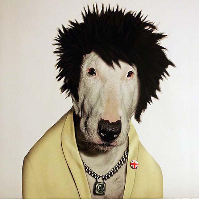 Állatok, akik híres embereknek öltöztek