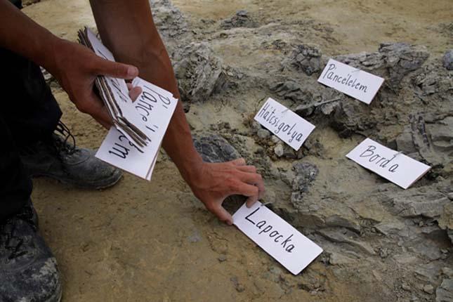 Iharkúti dinoszaurusz lelőhely