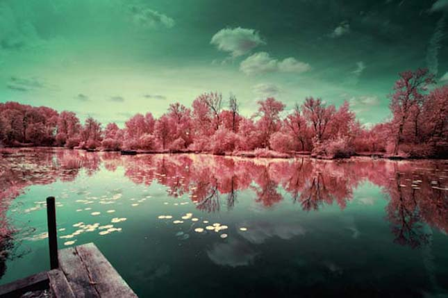 Gyönyörű infravörös fényképek David Keochkeriantól