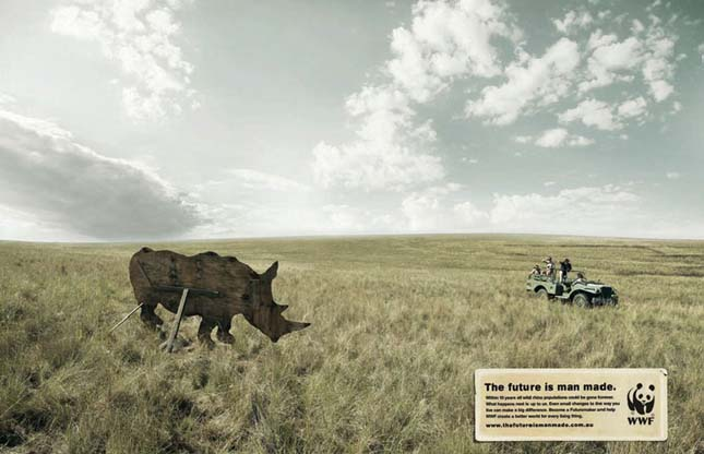 Kampány az állatvédelem nevében