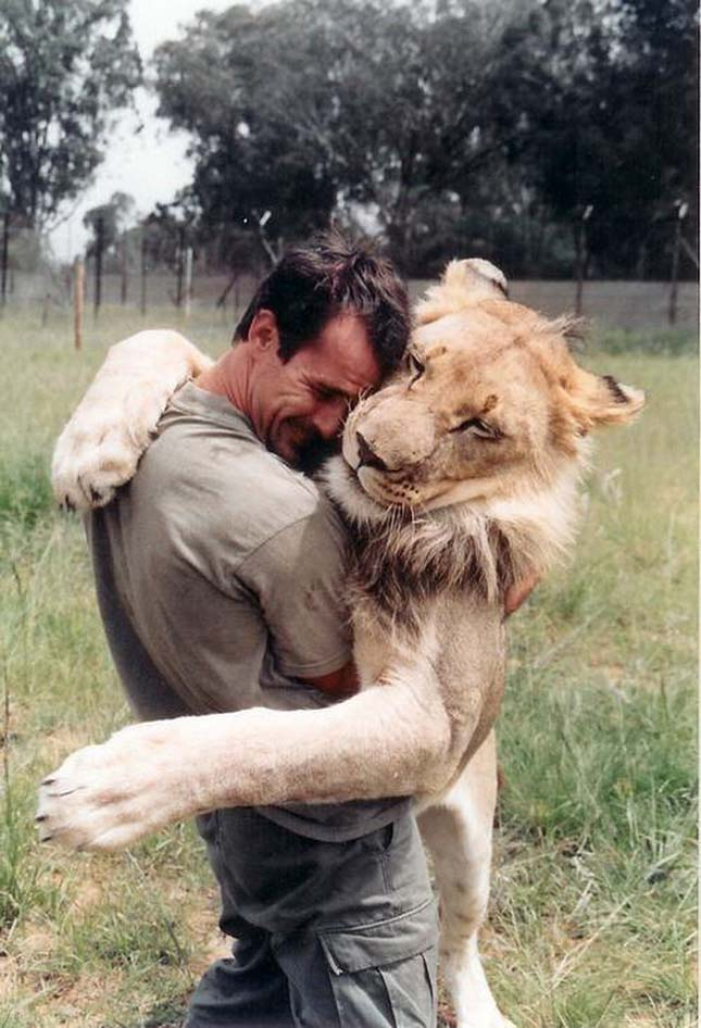 Kevin Richardson, az oroszlánokkal suttogó