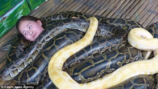 Kígyómasszázs