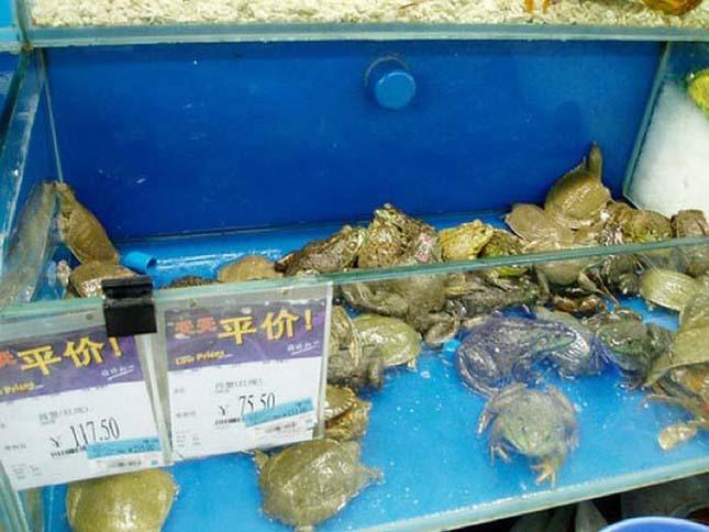 Kínai hipermarket