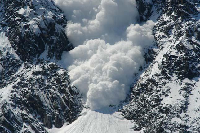 Túlélték a zergék a lavinát