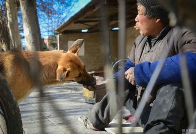 Kutyája segít közlekedni a lebénult férfinak