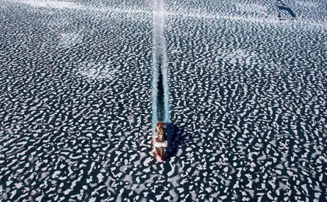 Yann Arthus-Bertrand légi fotói