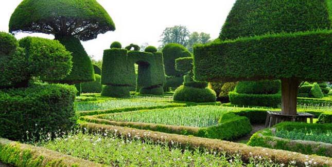 Levens Hall Erzsébet-kori kertje