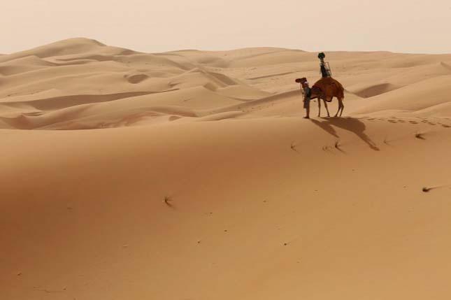 Liwa sivatag