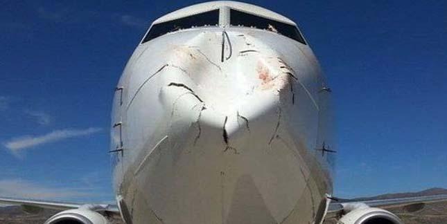 Madarakkal ütközött a repülő