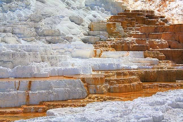 Minerva terasz, Yellowstone Nemzeti Park
