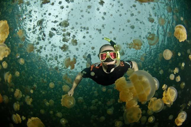 Medúza-tó
