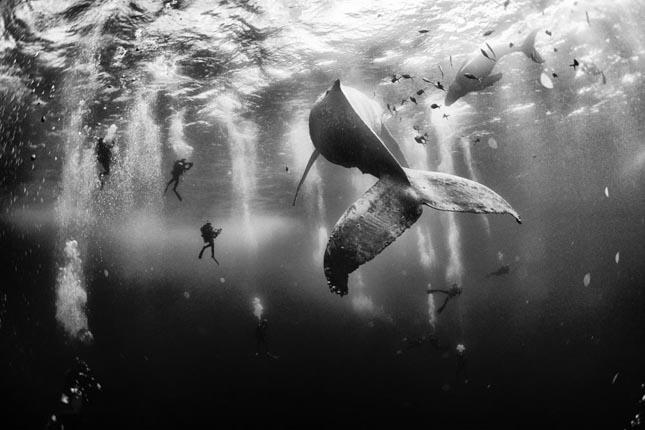 National Geographic Traveler Photo Contest 2015