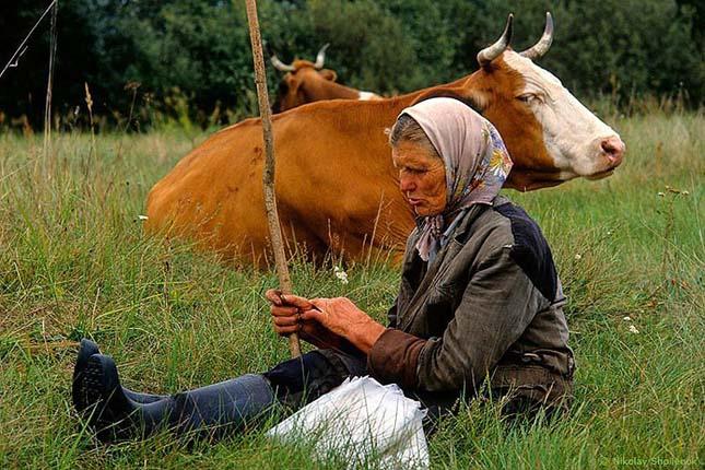 vidéki élet