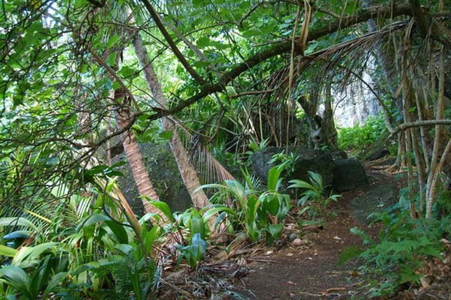 Pitcairn-szigetek